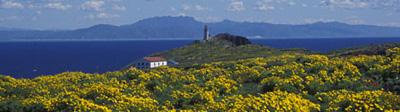 Visit Channel Islands National Park